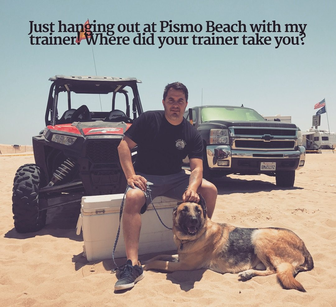 Los Angeles Dog Trainer Jeremy Talamantes